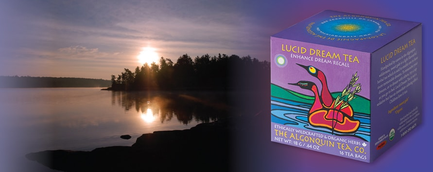 Lucid Dream Tea Enhanced Dream Recall » Handpicked by canoe in the Algonquin wilderness, sweet gale is a light flavourful herbal tea which is said to enable one to have more memorable dreams.